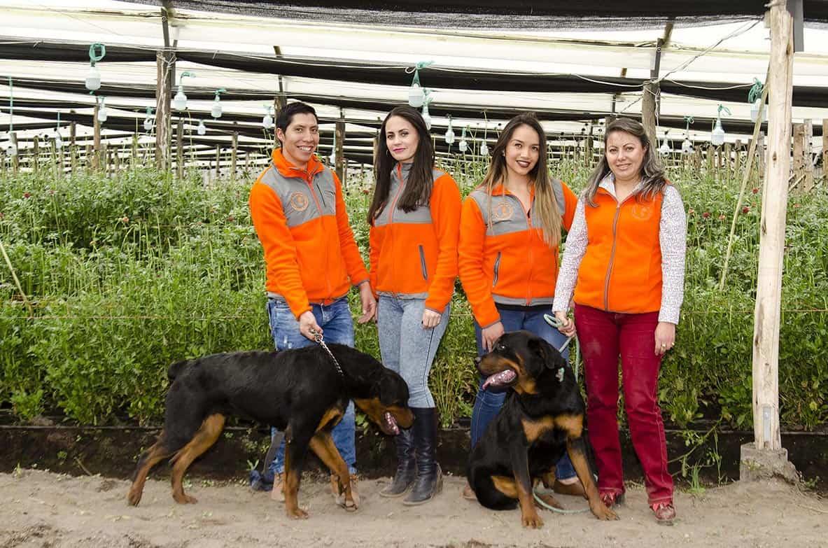 Equipo de Trabajo - The Chaupi Farm